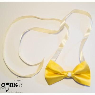 Papion Free-Tied Opus 06